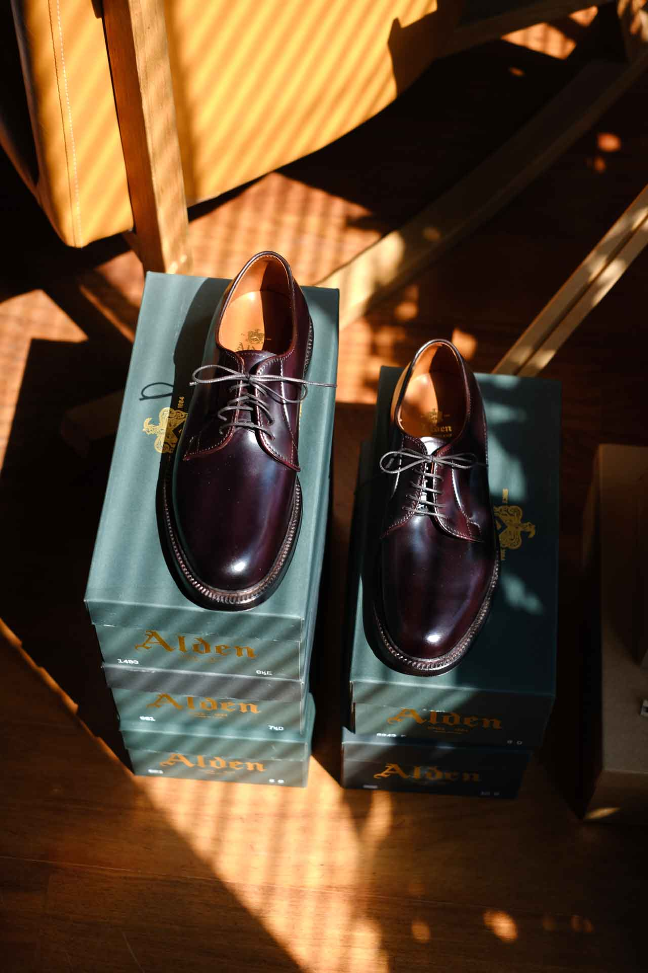 Alden Plain Toe Bluchers